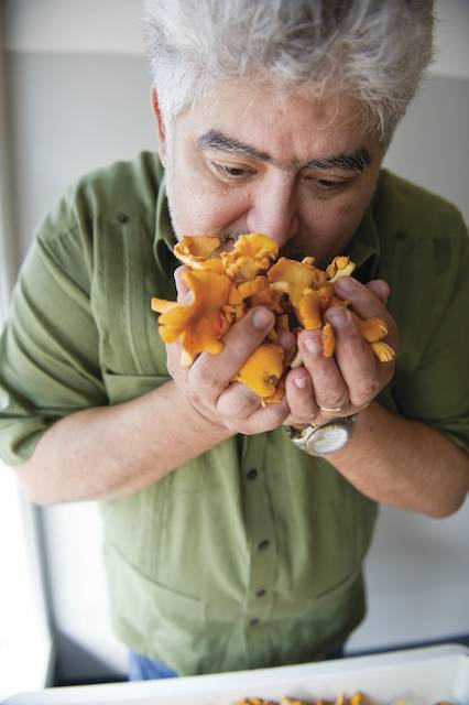 Adolfo Garcia Chanterelles. Photo by Elsa Hahne.