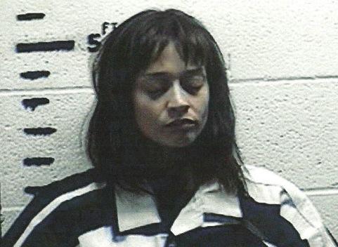 Fiona Apple mugshot arrested on The Idler Wheel tour