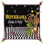 Bonerama, Shake It Baby, album cover