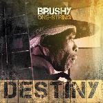 Brushy One String, Destiny, album cover