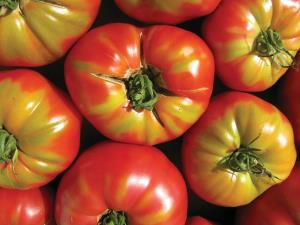 Tomatoes, OffBeat Magazine, June 2014