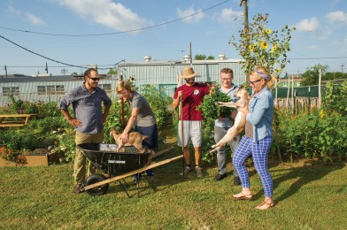 Chefs Aaron Burgau of Patois (far left), Michael Stoltzfus of Coquette (second from right) and Kristen Essig of Meauxbar (far right) stops by to check on the crops and the baby goats at Paradigm Gardens, tended by Jim Seely and Joel Tilton at 1131 South Rampart Street in Central City, between Calliope and Clio Streets. New Orleans chefs look no further than your backyard for fresh ingredients. Photo by Elsa Hahne