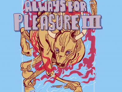Always For Pleasure Fest