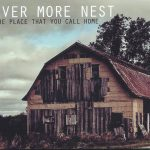 Ever More Nest - The Place That You Call Home